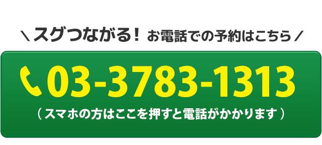 電話番号:03-3783-1313